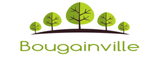 Bougainville Ventures Inc. (BOG) logo