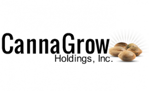 CannaGrow Holdings, Inc (CGRW) logo
